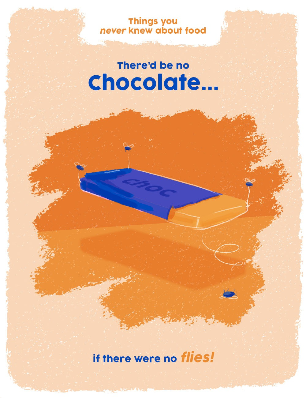 things you never knew about food graphics - flies make chocolate